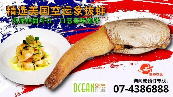 oversea-seafood-01